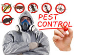 Flatline Pest Control - Pest Management in Central Coast