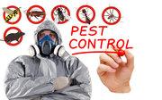 Flatlinepest Control - Pest Control Central Coast